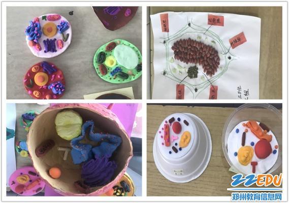 用画笔,超轻粘土,气球,水果,泡沫,种子等材料制作出了一个个美观而又